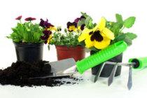 Hausmeisterdienst Gartenpflege, Leistungen HSM-Hausmeisterservice,